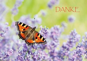 Bild von Dankeschön: Dank Schmetterling