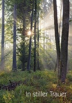 Bild von Trauer: In stiller Trauer Wald